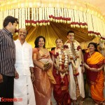 Soundaraya Marriage (116)