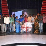Seedan Movie Audio Launch Stills (1)