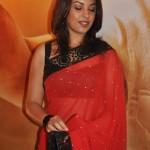 Richa Gangopadhyay gallery (10)