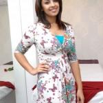 richa gangopadhyay(20)