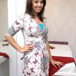 richa gangopadhyay(21)