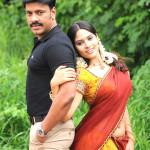 Sankarapuram - behindscreens (4)