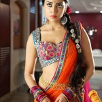 Shriya Saran - behind screens (15)