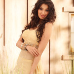 lakshmi rai - behind screens (12)