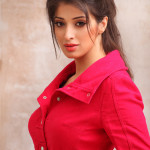 lakshmi rai - behind screens (15)