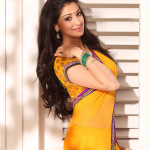 lakshmi rai - behind screens (2)