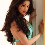 lakshmi rai - behind screens (21)